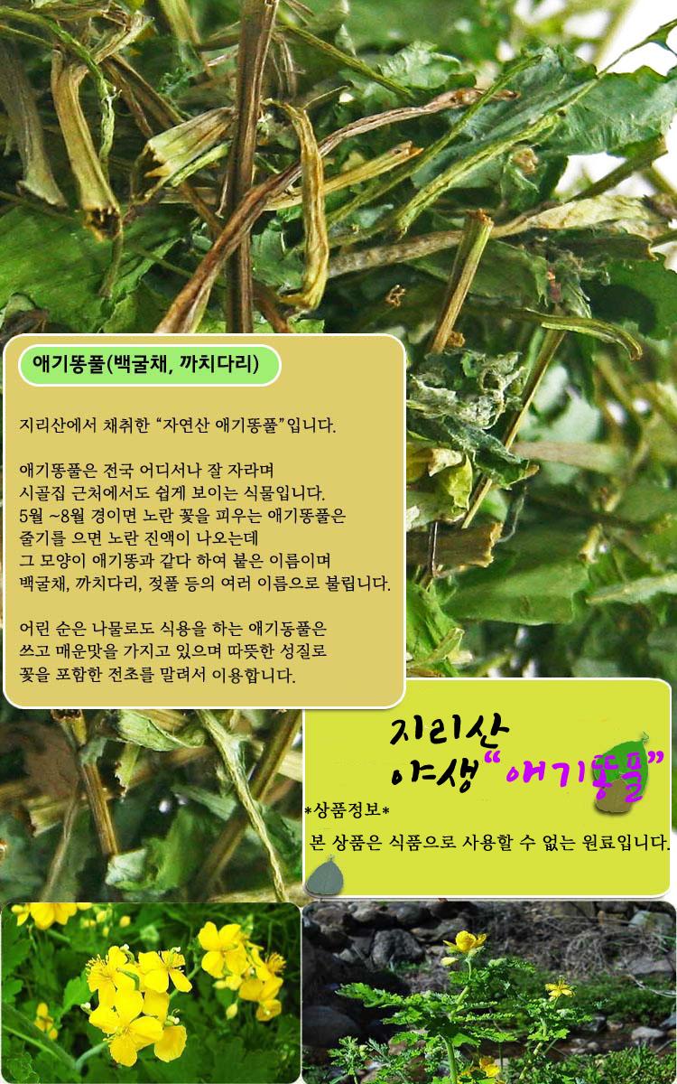 애기동풀식품 최종pg.jpg