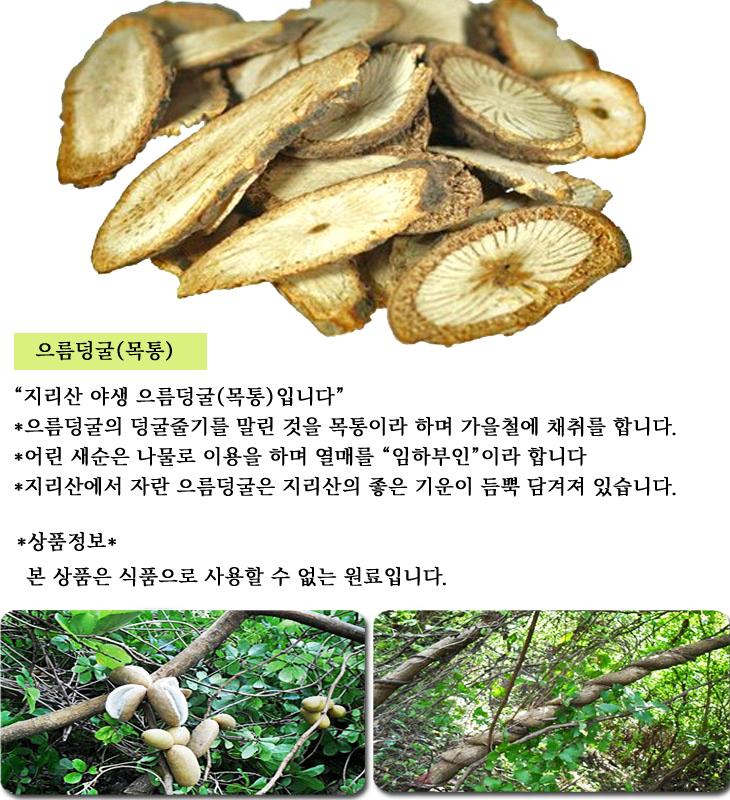 으름덩굴 최종.jpg