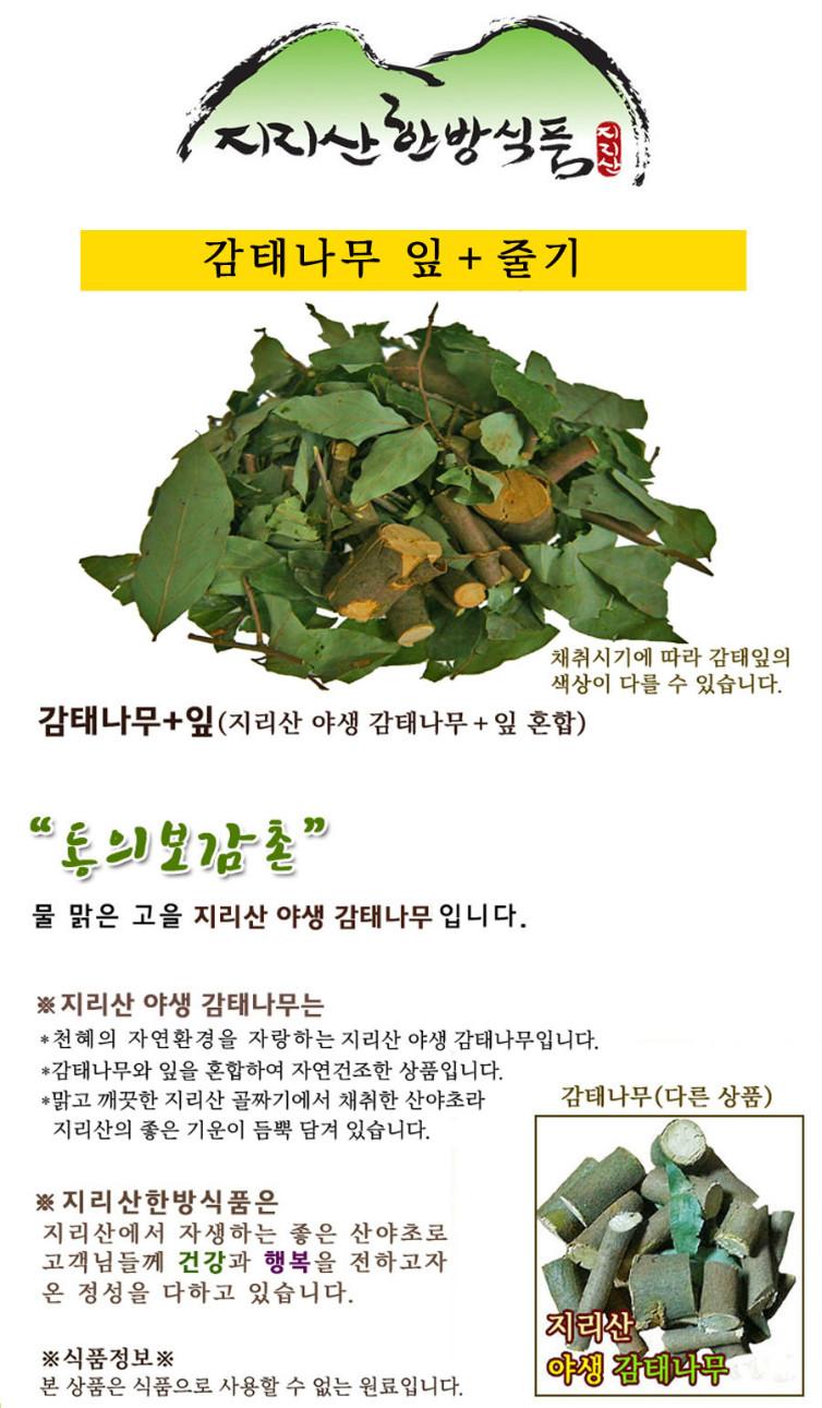 나무 잎 900.jpg