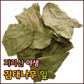 잎280.jpg